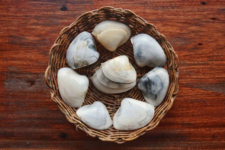 Directly Above Shells Conchas Cesta Basket Wood Madeira Palha First Eyeem Photo EyeEmNewHere