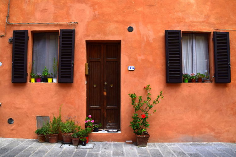 Architecture Building Exterior Built Structure City Day Door Flower House Nature No People Outdoors Plant Potted Plant Residential Building Window Window Box Italy Italian Architecture Tuscany Toscana Under The Tuscan Sun Colour Your Horizn