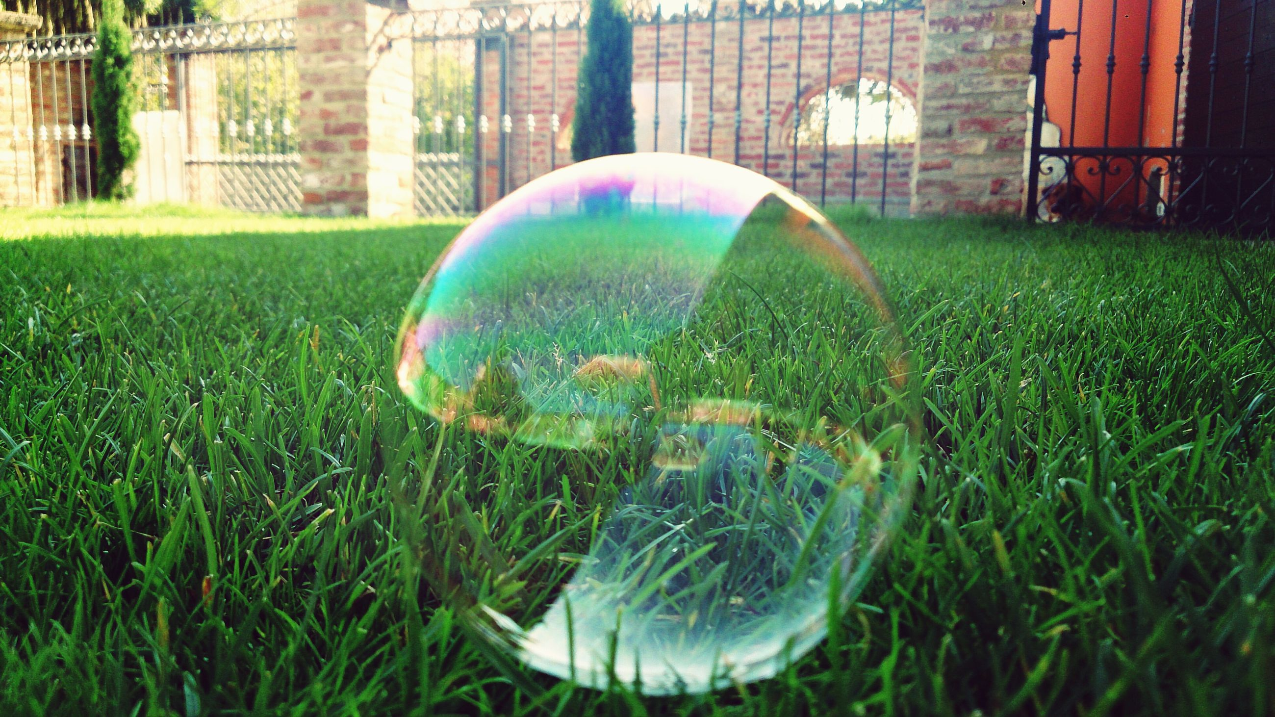 grass, green color, building exterior, built structure, lawn, sphere, bubble, close-up, architecture, reflection, multi colored, focus on foreground, field, outdoors, transparent, day, ball, no people, park - man made space, glass - material