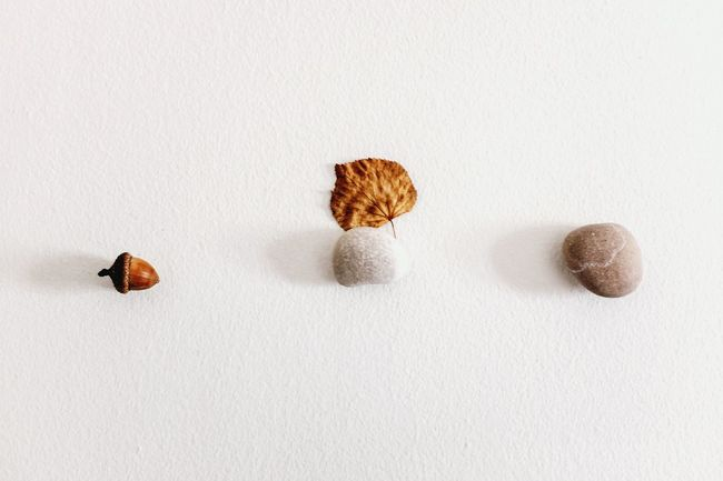 An acorn we found together, pebbles we picked up from the beach we went together, a leaf you were tickling me with when we were enjoying the end of last Autumn, yes, I remember all. Smart Simplicity Love Objects Acorn Pebbles Leaf Dry Leaves EyeEm Best Shots - My World Interior Design Open Edit