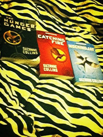 Reading The Hunger Games