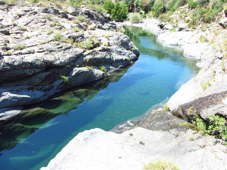 Fango Fango river Corse Korsika korsika corsica gumpe wildlife Nature Wildlife & Nature