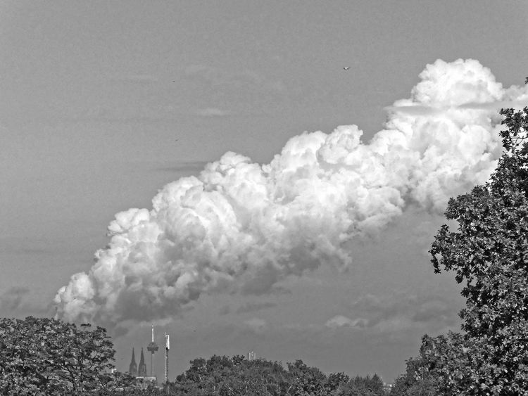 Cologne Cathedral under the coal-fired power plant cloud Architecture Beauty In Nature Cloud - Sky Coal Fired Day Environmental Conservation Environmental Damage Environmental Pollution Nature No People Outdoors Pollution Power Plant Cloud Sky Tree