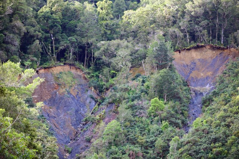New Zealand's high level of rainfall, combined with steep hillsides, see's the effect of major landslips. In this captures moment in time, one can see the thin layer of soil which heavy, tall mature native hardwood trees have in which to cling to or grasp below for a foothold in the highly saturated soil. With bedrock less than a meter in places, any major stands of trees have no chance to retain a firm grip to the ground, when the soil becomes further saturated by an intense rainfall period. My plan from taking this photo, is to return in a years time back to this location & to see what progress nature has made in terms of healing its scarred terrain. To see what, if any, new life has begun to grow on the area now washed away. EyeEm Nature Lover Landscape_photography Landscape_Collection Landslide Moment In Nature Nature Nature On Your Doorstep Nature Photography Rock Formation Tadaa Community Trees Climate Climate Change Climate Nature Photography Eye4photography  Forest Forest Photography Landscape Landscape_photography Moment In Time Nature_collection Naturelovers Soil Erosion Streamzoofamily Tree_collection