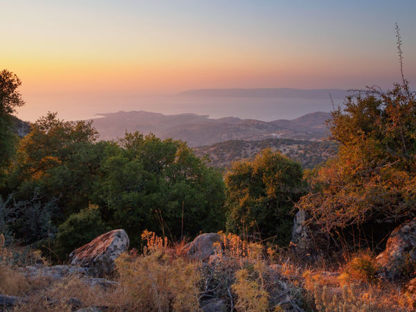 Sunset on Lesbos, Greece Aegean Sea Beauty In Nature Coastline Dusk Evening Forest Greece Hill Horizon Over Water Island Landscape Lesbos Mountain Nature Outdoors Scenics Sea Sky Summer Sunset Tourism Travel Travel Destinations Tree Vacation