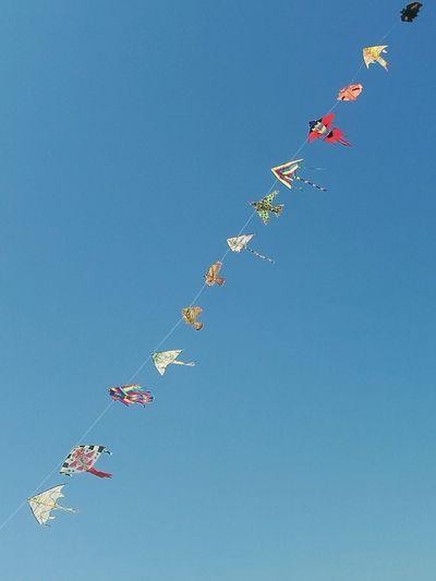 Kites against sky