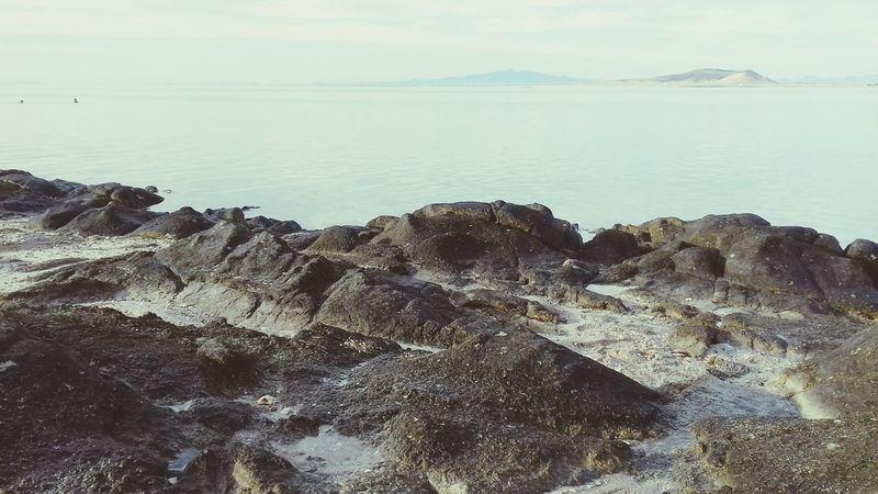 🌊⛅ Water Beach Nature