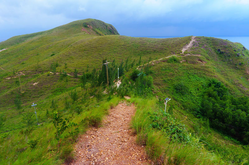 Mountain Trail Malalison, Antique Mountain Summit Philippines Antique Perspective Tea Crop Tree Rural Scene Tree Area Hill Social Issues Agriculture Sky Grass Landscape Field Farmland Grass Area Grazing