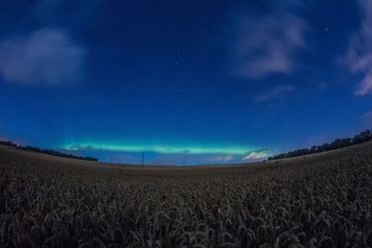 Aurora Borealis Northern Lights Scotland Agriculture Beauty In Nature Blue Day Farm Field Fish-eye Lens Growth Landscape Nature No People Outdoors Rural Scene Scenics Sky Tranquil Scene Tranquility Wheat