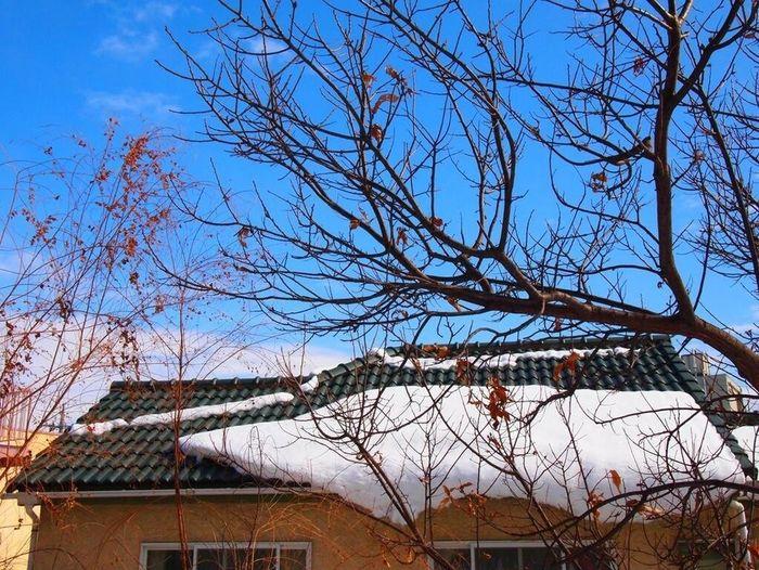 雪のあと / after snowy 白くなったご近所を散歩してみた。After snowy, I went for a walk around my house. Sky After Snowing Day