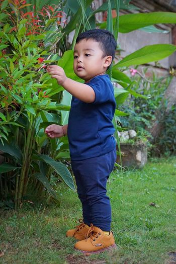 baby with the green area #Garden Baliphotography Bali Balinese Bali, Indonesia Full Length Childhood Portrait Standing Smiling Happiness Tree Baby Grass Casual Clothing Growing Baby Clothing Babyhood Babies Only Flower Head