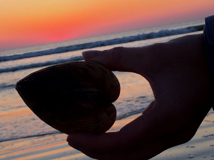 Hearts to share LovingLife Hello World ✌ Ocean❤ Simple Life Beachlovers Sunrise Waves, Ocean, Nature Just Hanging Out