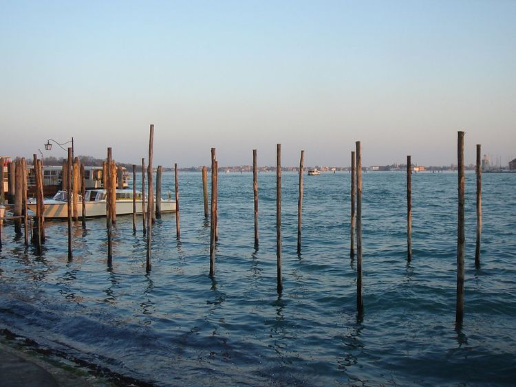 Outdoors Reflection Rippled Sea Stick Sticks Venice Water Waterfront Blue Wave