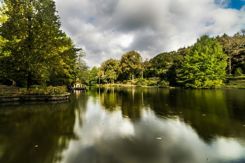 Landscape Trees Tree Green Autumn Fall Lake Water Reflections Reflection Istanbul AtaturkArboretumu Clouds Sky Istanbuldayasam