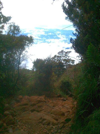 View from Mount Kinabalu First Eyeem Photo