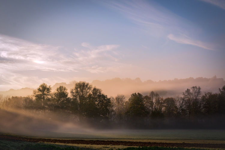 fog in the sunrise Beauty In Nature Day Fog Hazy  Idyllic Landscape Mist Nature No People Outdoors Rural Scene Scenics Sky Sunset Tranquil Scene Tranquility Tree Water