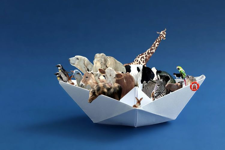 Close-up of paper animals in origami boat at blue table