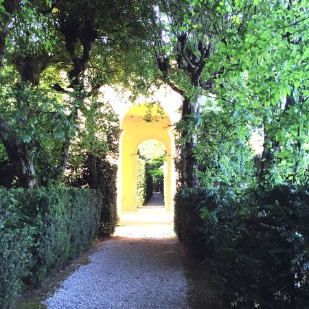 Valsanzibio Italian Garden Green Trees And Leaves Green Nature Relaxing Place Enjoying The View Walking Around Taking Photos