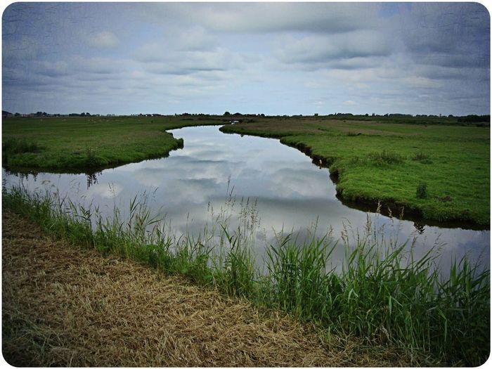 Water_collection Dutch Landscape EyeEm Best Edits Blue Meets Green