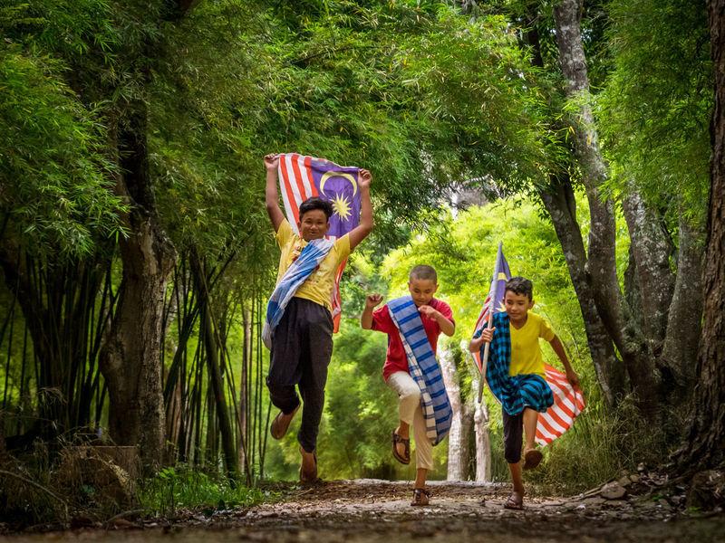3 boys having fun along a path waving the national flag 3 Kids Bonding Boys Child Childhood Flag Happiness Nature Outdoors Togetherness Tree
