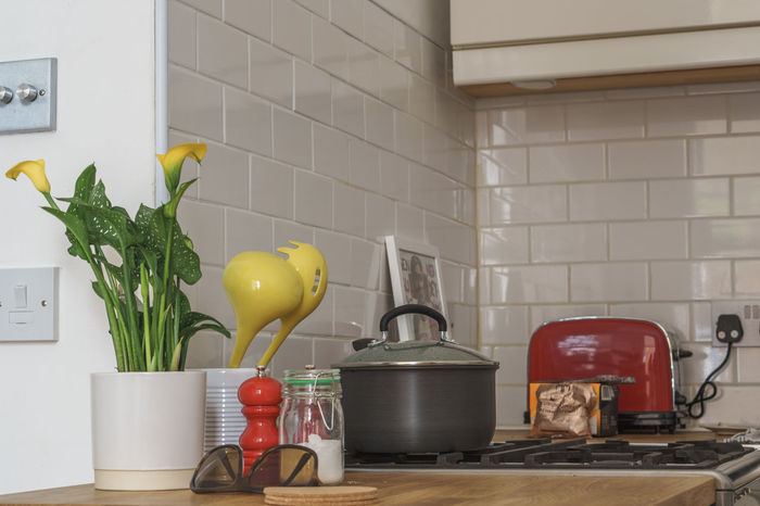 Day Domestic Kitchen Domestic Room Home Interior Indoors  Kitchen Kitchen Utensils No People Plant Red Toaster