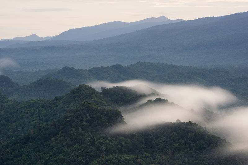 Aerial view panoramic at sunrise with fog above mountain in mae moh, lampang, thailand, drone.