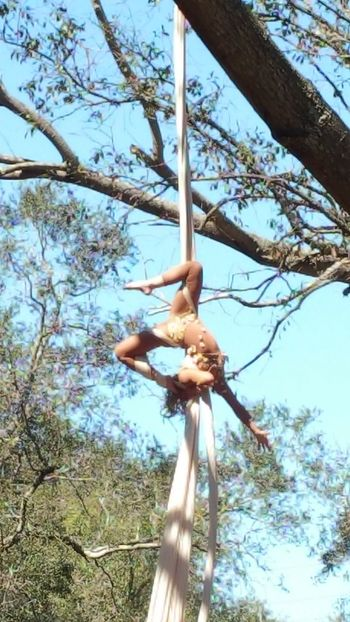 Tree fairy Tree Low Angle View Nature Day Sky Acrobatic Performance Celebration Beauty In Nature Outdoors Bare Tree Branch Nature Tree Art Is Everywhere Go Higher