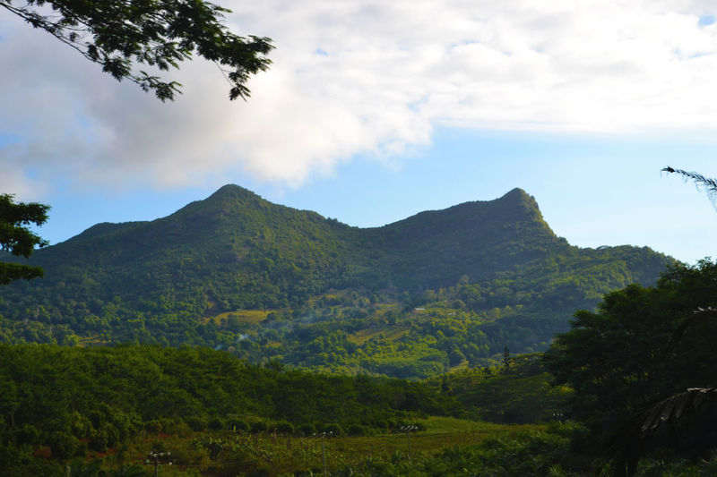 Africa Beauty In Nature Day Green Holiday Landsape Mauritius Mountain Mountain Range Outdoors Scenery Scenics Summer Tranquil Scene Tropical