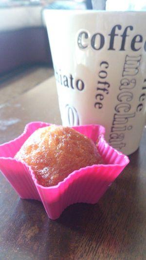 Breakfast Coffee Filterless Nofilter
