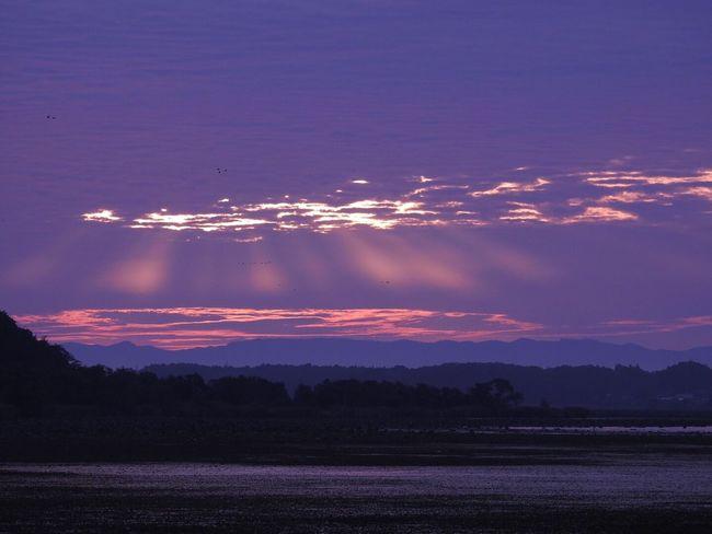 Landscape Sunrise Water 伊豆沼 伊豆沼物語