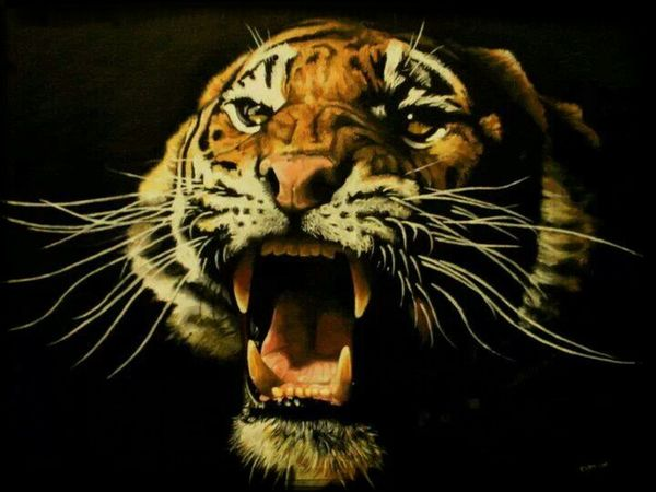 Check This Out Art Enjoying Life Hello World oil painting of Tiger