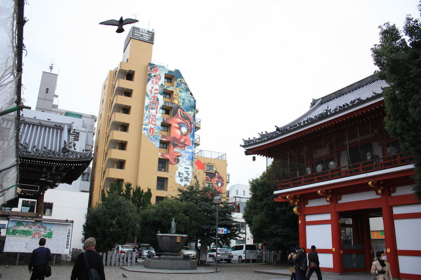 Japan 17 Day trip Osaka.Kyoto.Nara.Universal.Iga-ueno.なばなの里.Nagoya.Inuyama.サツキとメイの家 Building Exterior Cityscapes Japanese Architecture Low Angle View Nagoya Osu Kannon Temple Osu Shopping Arcade Outdoors Pigeon