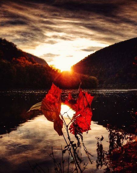 Sunset Red Reflection Water Sun No People Nature Lake Sunlight Mountain Autumn Cloud - Sky Sky Outdoors Beauty In Nature Flower Day Reflection EyeEmNewHere Connected By Travel