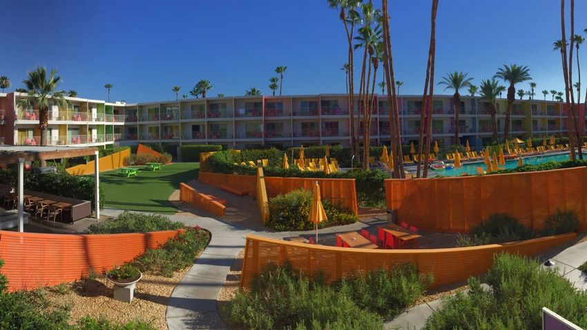Saguaro Hotel Colors Palm Trees Swimming Pool California Palm Springs
