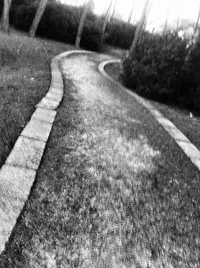 Life is nothing more than following the path