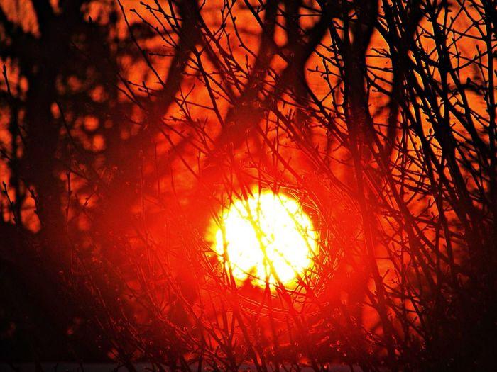 Sunset Amazing! Sunset Fire