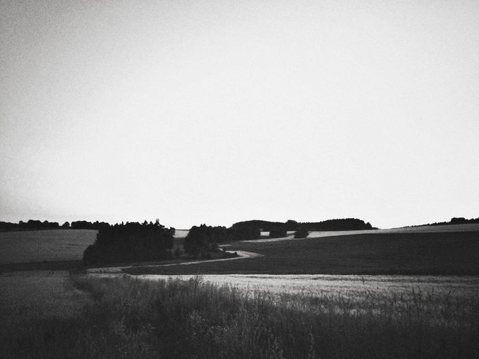 the field of music Blackandwhite Czech Republic Nature IPhoneography