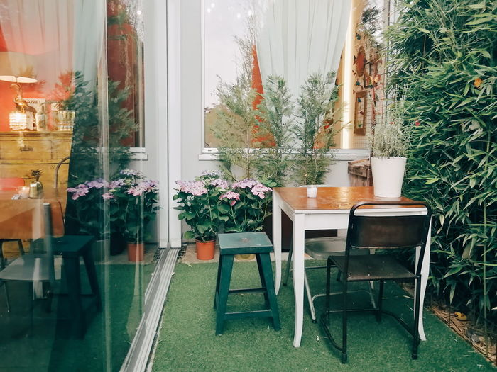 Aperitif Bar Garden Flower Curtain Furniture Chair Home Showcase Interior Table Window Home Interior Potted Plant Plant