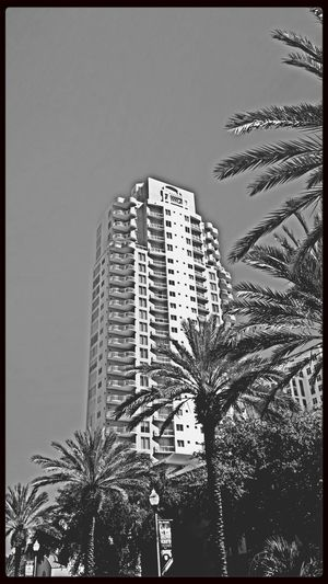 EyeEm Best Shots - Architecture Architecture_bw Black And White Monochrome