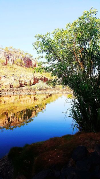 Shade Desert Beauty Australia Tranquility Water Reflections Northern Territory Reflection Sky Nature Water No People Beauty In Nature Outdoors Freshness Tree