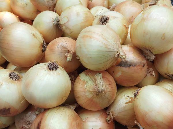 Onions Healthy Eating Onion Organic Food Vegetable Raw Onion Ingredient Vegan Food Cooking