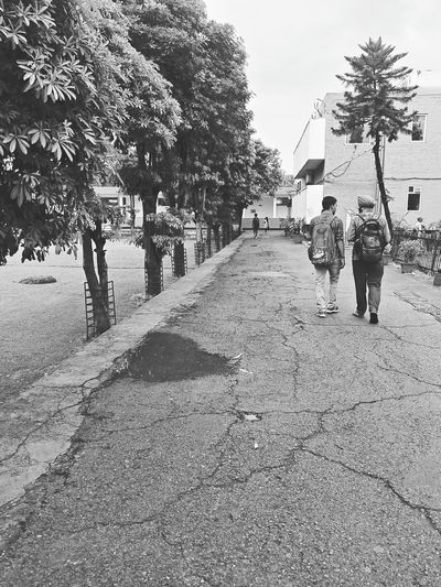 Black And White Friday People Adult Walking Day Outdoors Rear View Men Togetherness Full Length Tree Child Standing Boys Childhood Bonding Nature Only Men Sky EyeEmNewHere