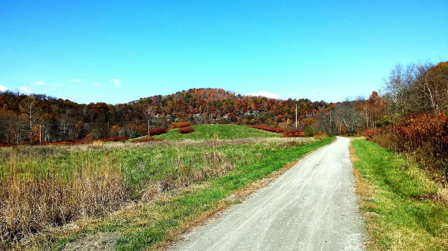 Outdoors Nature Trail Mountain Biking Biking Hiking Pennsylvania Autumn Scenic View Nice Views Views