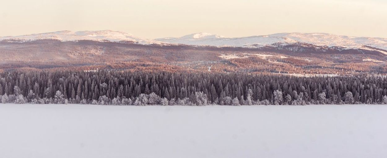 Sweden Photographer Photography Photo Snow Winter Cold Temperature Mountain Beauty In Nature Scenics Tranquility Tranquil Scene Nature Landscape Mountain Range Tree No People Day Outdoors Wilderness Area Sky