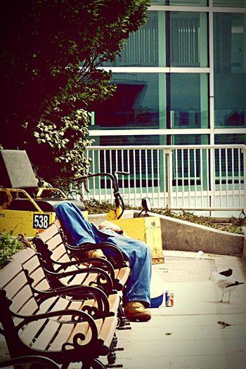 Chicago employee on his lunch break at Navy Pier. Navy Pier Navypier Chicago Downtown Chicago Downtown Chicago Illinois Chicago ♥ Chicago Life Chicagolife City City Life Citylife Nap Nap Time Naptime Power Napping Break Breaktime Break Time Navypierchicago NavyPiers Chicago Navy Pier The Photojournalist - 2016 EyeEm Awards