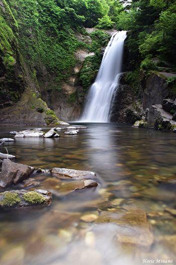 秋保大滝 EyeEm Best Shots EyeEm Selects EyeEm Gallery EyeEmNewHere Water Motion Scenics - Nature Plant Beauty In Nature Long Exposure Waterfall Rock - Object