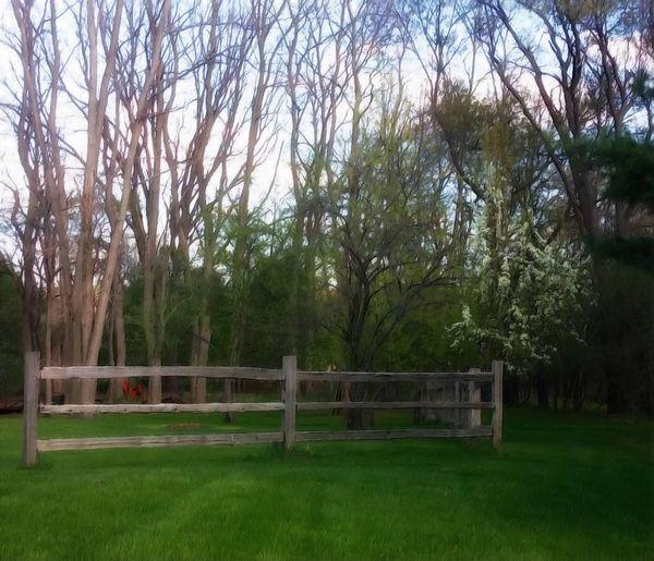 Rail Fence Treescape Grassland Landscape Clouds And Sky Yards