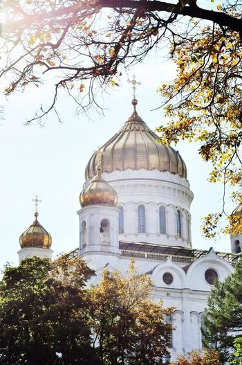 Moscow Russia I Love Moscow  Christ The Savior Cathedral Postcard Autumn Sun Autumn Colors Golden Autumn Fall Beauty Beautiful City Moscow Churches Cathedral Architecture_collection Architecture Journey Travel Photography Likeforlike Followme Beautiful Day Moments Monuments Buildings City