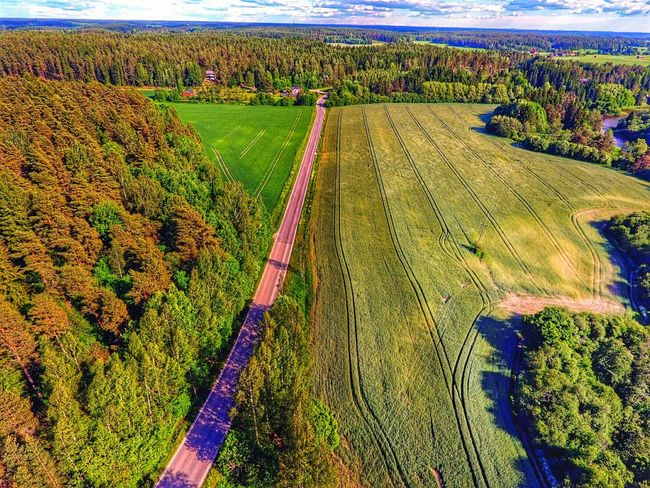 Aerial View Aerialphotography Green Color Nature Growth Freshness Lieto Beauty In Nature Flying High