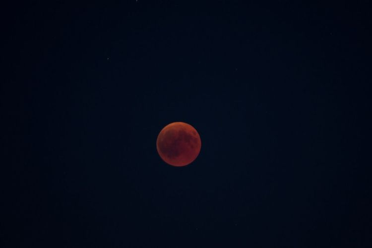Totale Mondfinsternis Total Solar Eclipse Totale Mondfinsternis Stars Mondfinsternis Blood Moon Space Astronomy Moon Sky Night Scenics - Nature Full Moon Moon Surface Eclipse Beauty In Nature Circle First Eyeem Photo